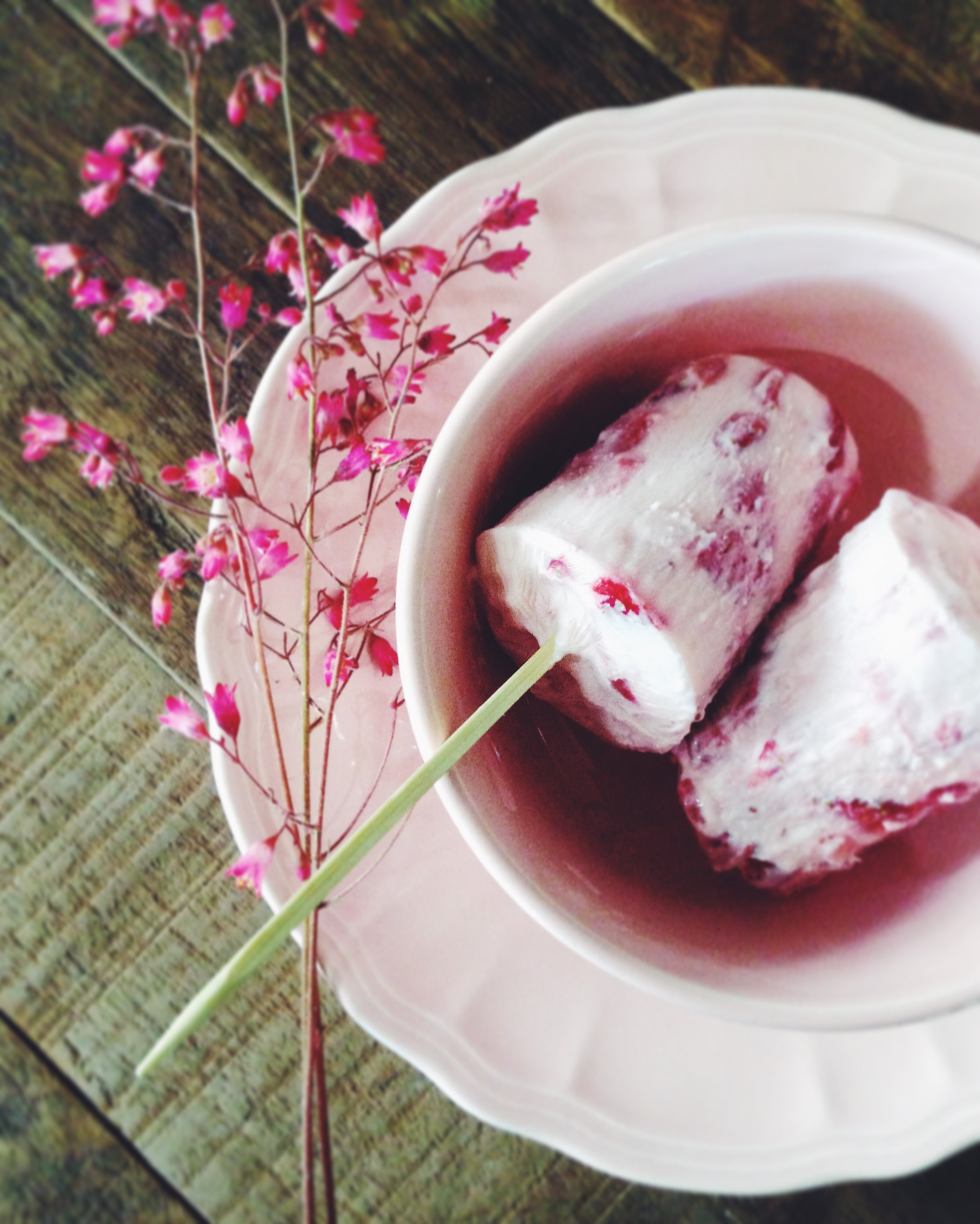 Petites glaces légères à la fraise - Juliette Lalbaltry